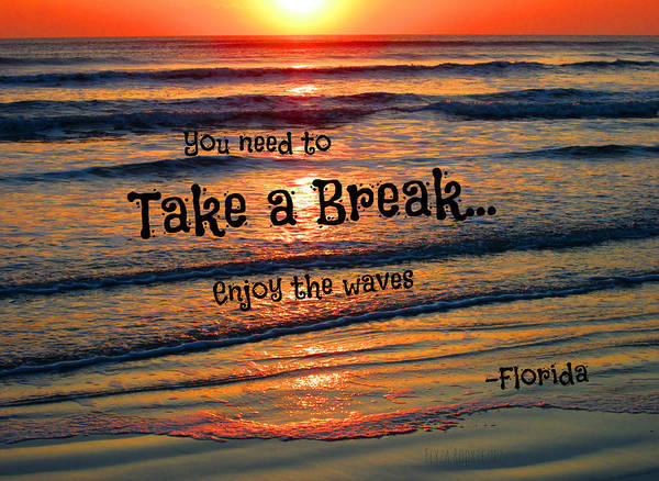 Photograph - Take A Break Limited Special by Elyza Rodriguez