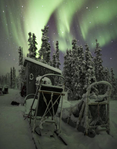 Photograph - Take A Seat For The Aurora 11x14 by Ian Johnson