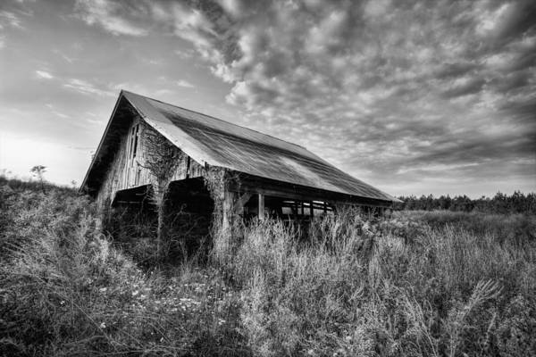 Photograph - Take Me To The Country by JC Findley