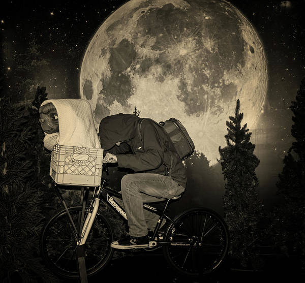 Bmx Photograph - Take Off by Martin Newman