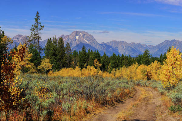 Photograph - Take The Back Road by Greg Norrell
