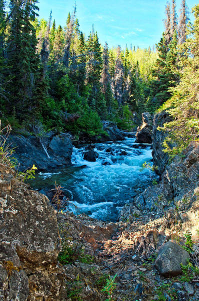 Haines Falls Photograph - Takhanne River - Yukon Territory by Cathy Mahnke