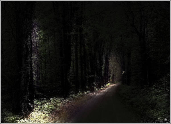 Photograph - Even Through The Darkness There Is Light by Wayne King