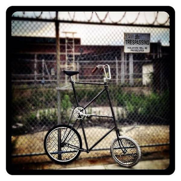 Transportation Photograph - Tall Bike by Natasha Marco
