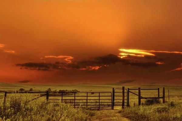 Flint Hills Photograph - Tall Grass Prairie by Don Spenner