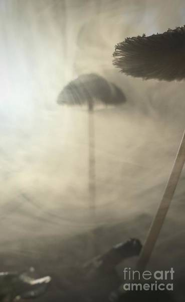 Vape Photograph - Tall Mushroom Lost In Vapor by Justice Frangipane