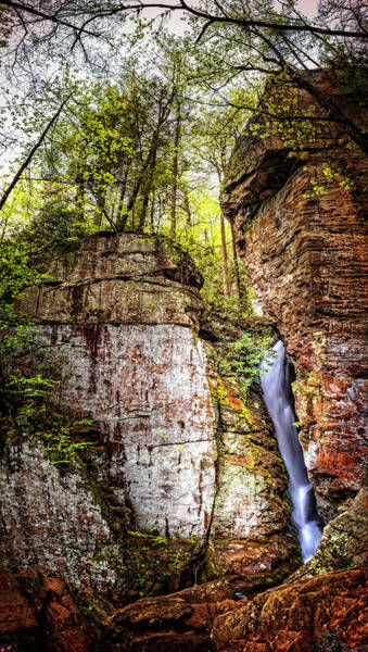 Photograph - Tall Raven's Cliff Waterfall by Debra and Dave Vanderlaan