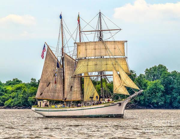 Photograph - Tall Ship - Barquentine Gazela by Nick Zelinsky