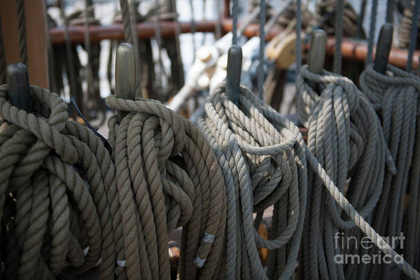 Photograph - Tall Ship Lines IIi by Dale Powell