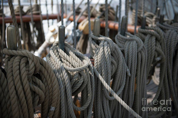 Photograph - Tall Ship Lines Iv by Dale Powell