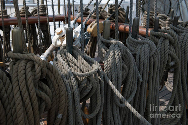Photograph - Tall Ship Lines V by Dale Powell