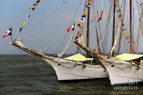 Photograph - Tall Ships Southern Breeze by Dale Powell