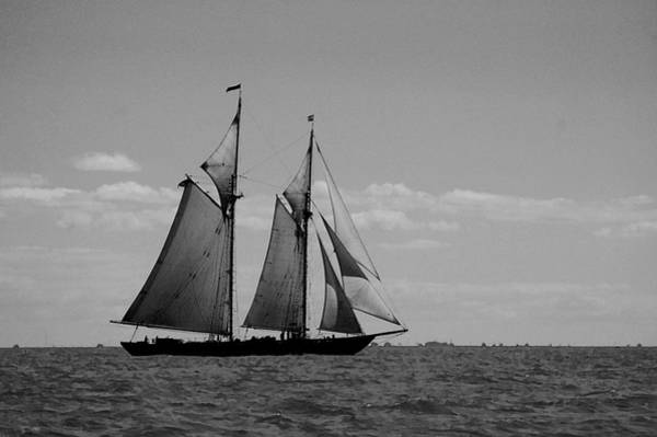 Photograph - Tallship by Michael Thomas