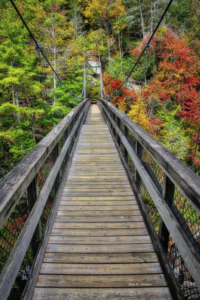 Photograph - Tallulah Gorge Bridge by Dale R Carlson