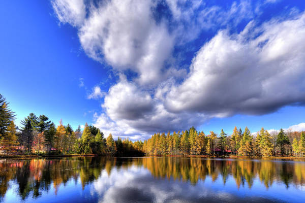 Photograph - Tamarack Reflections In The Adirondacks by David Patterson