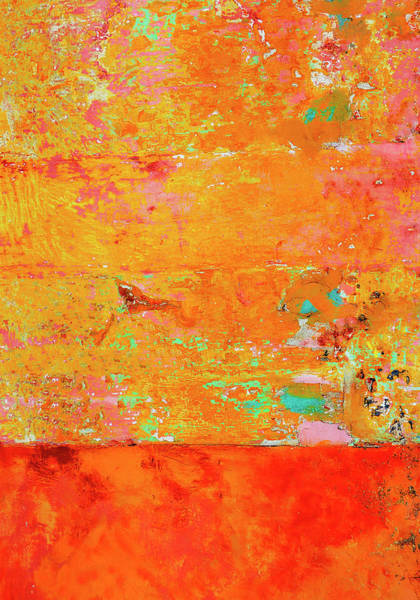 Wall Art - Photograph - Tangerine Dream by Skip Hunt