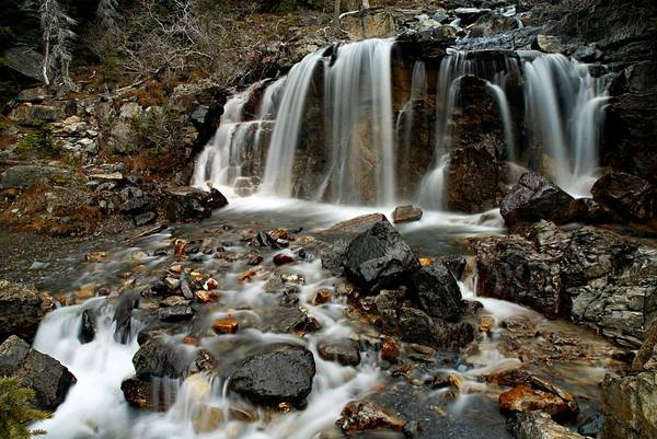 Photograph - Tangle Falls Closeup 4 by Larry Ricker
