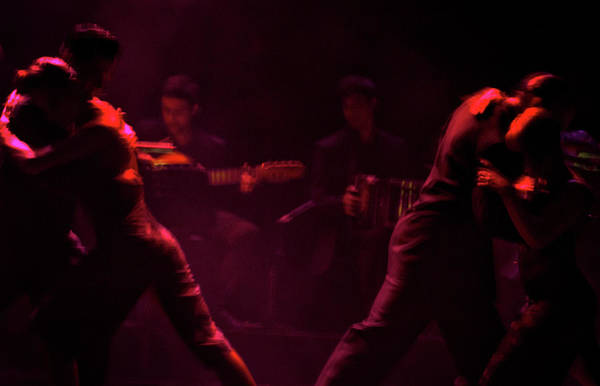 Photograph - Tango Show #2 - Buenos Aires by Stuart Litoff