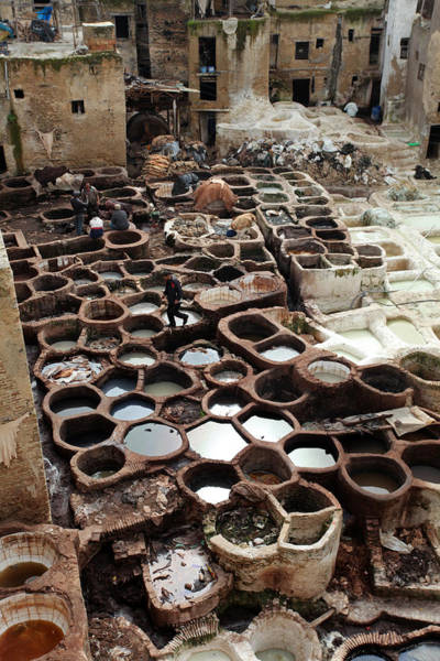 Photograph - Tanneries In Fez by Aivar Mikko