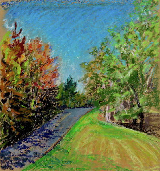 Catskill Drawing - Tannersville Road by Bonnie See