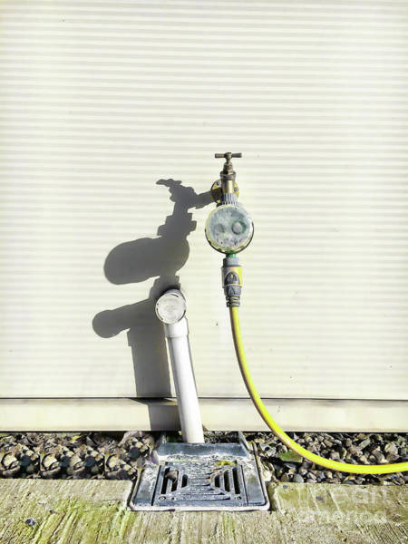 Wall Art - Photograph - Tap And Hosepipe by Tom Gowanlock