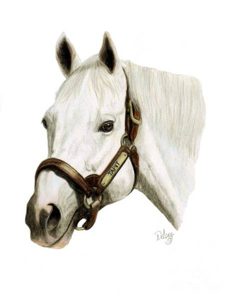Wall Art - Painting - Tapit by Pat DeLong