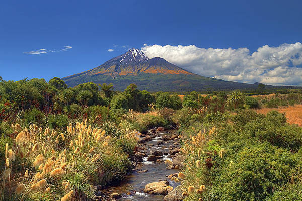 Photograph - Taranaki Gold by Peter Kennett