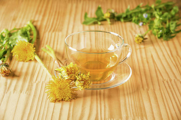 Photograph - Taraxacum Tisane by Traven Milovich