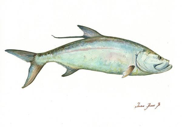 Tarpon Wall Art - Painting - Tarpon Fishf by Juan Bosco