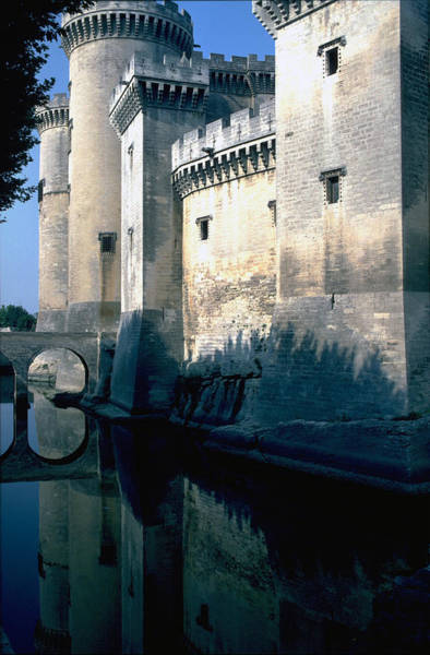 Photograph - Tarragon France by Flavia Westerwelle