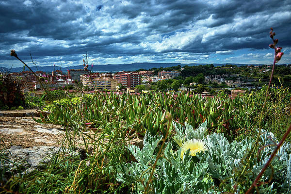 Photograph - Tarragona From The Roman Wall by Fine Art Photography Prints By Eduardo Accorinti