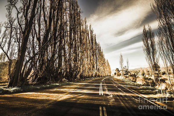 Winding Roads Photograph - Tasmania Scenic Drive by Jorgo Photography - Wall Art Gallery