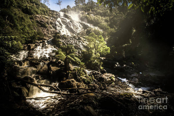 Cascade Wall Art - Photograph - Tasmania Wild by Jorgo Photography - Wall Art Gallery