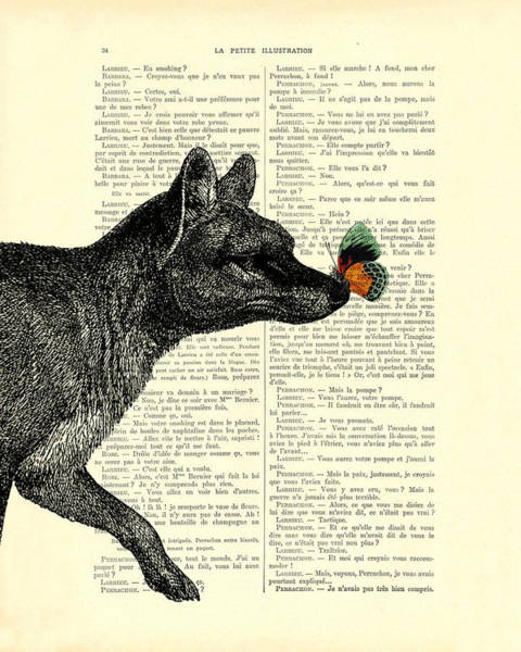 Tiger Digital Art - Tasmanian Tiger And Orange Butterfly Antique Illustration On Dictionary Page by Madame Memento