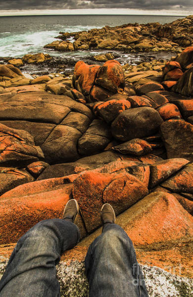 Seat Photograph - Tasmanian Tourist Kicking Back  by Jorgo Photography - Wall Art Gallery