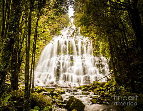Wall Art - Photograph - Tasmanian Waterfalls by Jorgo Photography - Wall Art Gallery