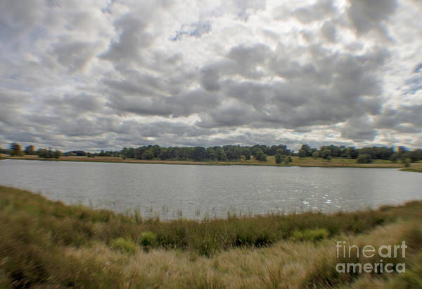 Photograph - Tatton Park by Doc Braham