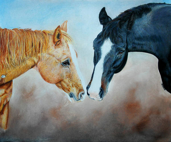 Aqha Painting - Tc Joe And Supremo by Amber Dennis