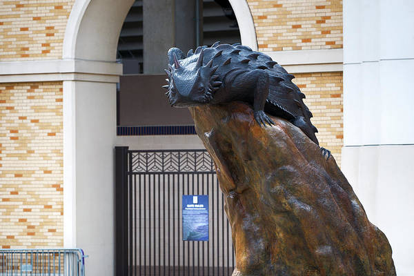 Photograph - Tcu Horned Frog 110216 by Rospotte Photography