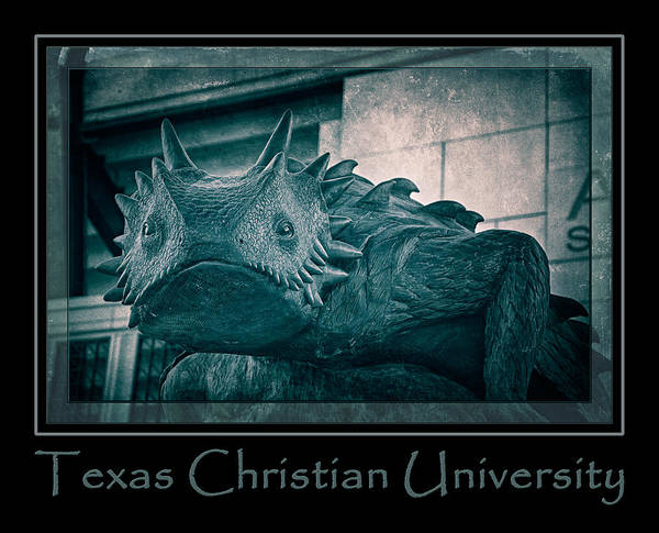 Photograph - Tcu Horned Frog Poster Cobalt by Joan Carroll