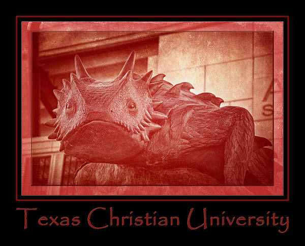 Photograph - Tcu Horned Frog Poster Red by Joan Carroll