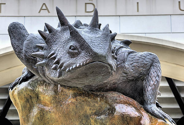 Tcu Wall Art - Photograph - Tcu Horned Frogs by JC Findley