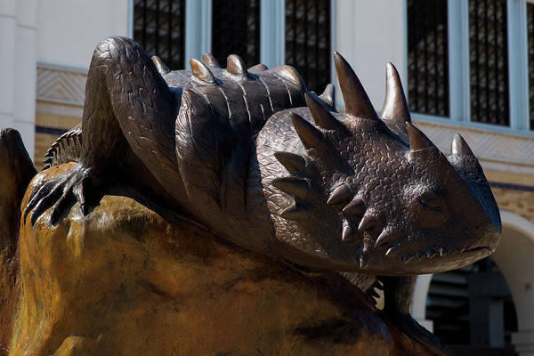 Photograph - Tcu Horned Frogs V3 102716 by Rospotte Photography