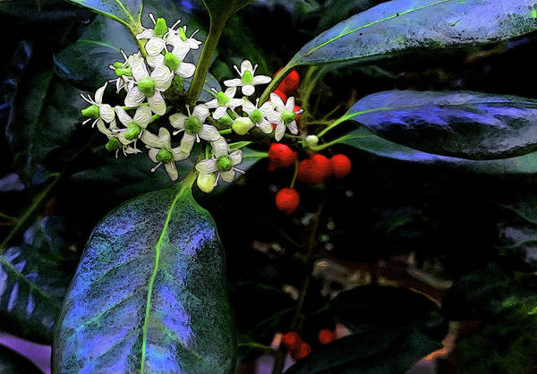 Digital Art - Tea And Berries by Gina Harrison