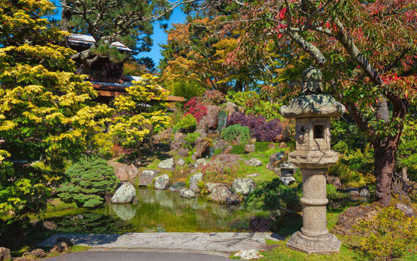 Photograph - Tea House Gardens by John M Bailey
