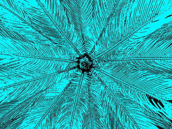 Digital Art - Teal Tantra I by James Granberry