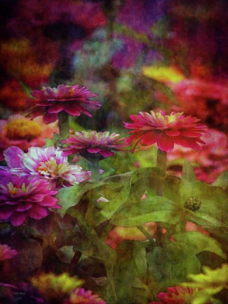Photograph - Technicolor Garden 1301 Idp_2 by Steven Ward