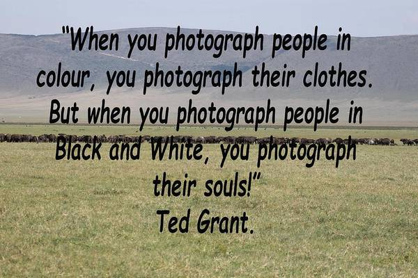 Photograph - Ted Grant Quote by Tony Murtagh