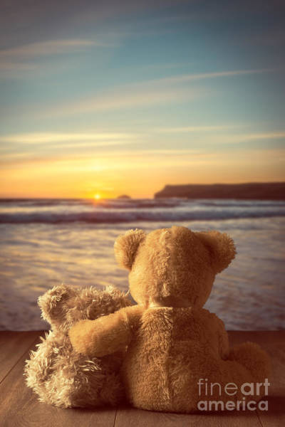 Sun Set Photograph - Teddies At Sunset by Amanda Elwell