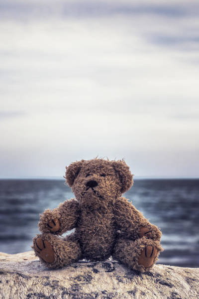 Wall Art - Photograph - Teddy Bear At The Sea by Joana Kruse